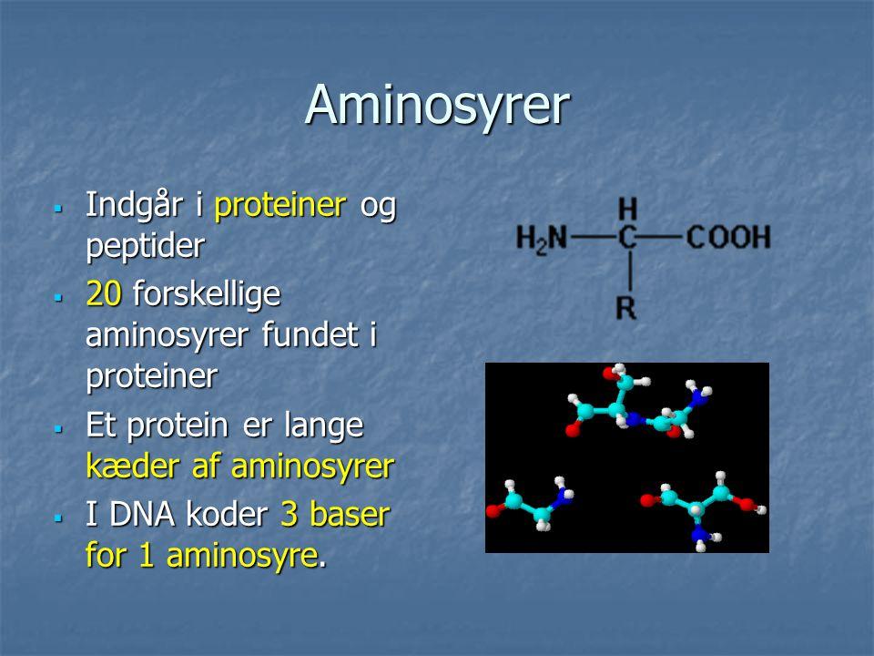 Aminosyrer Indgår i proteiner og peptider