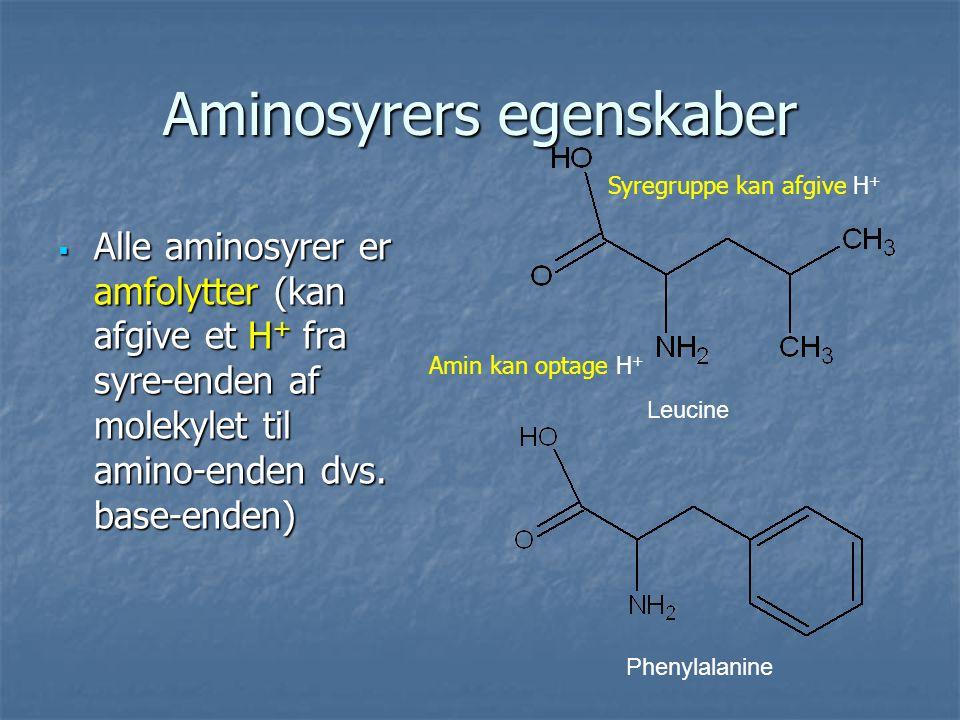 Aminosyrers egenskaber