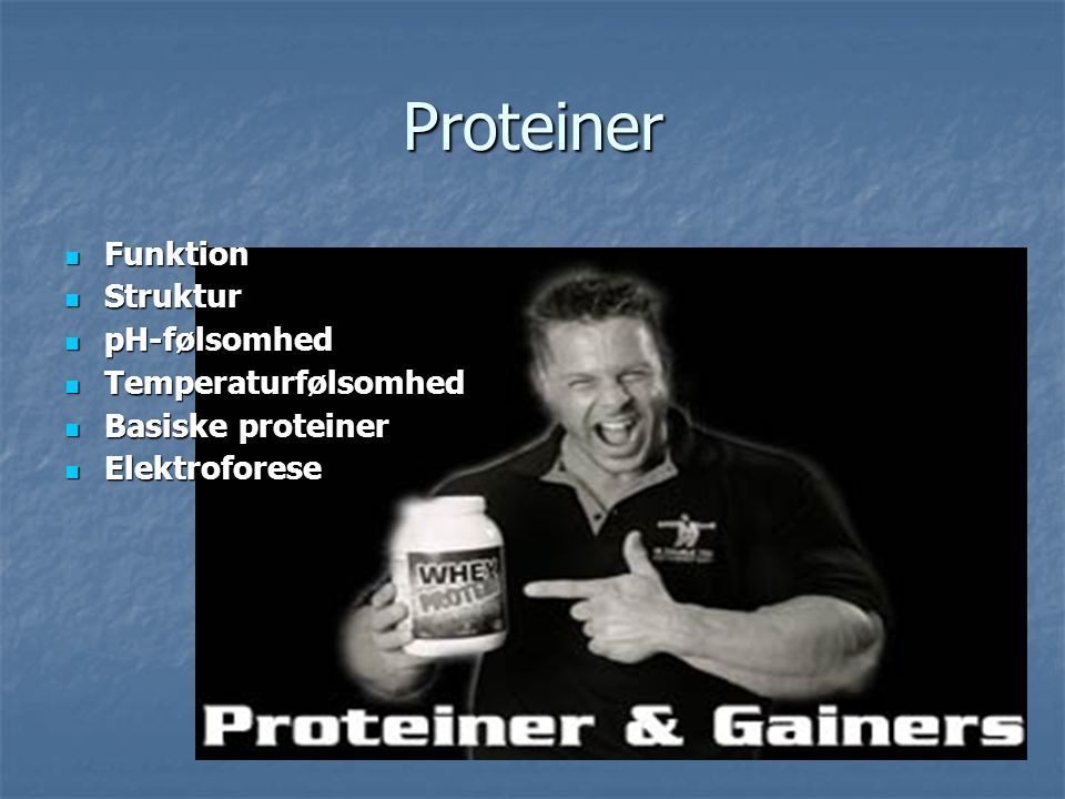Proteiner Funktion Struktur pH-følsomhed Temperaturfølsomhed