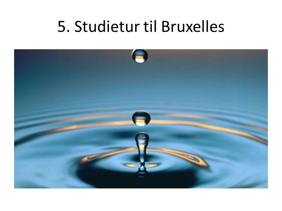 5. Studietur til Bruxelles