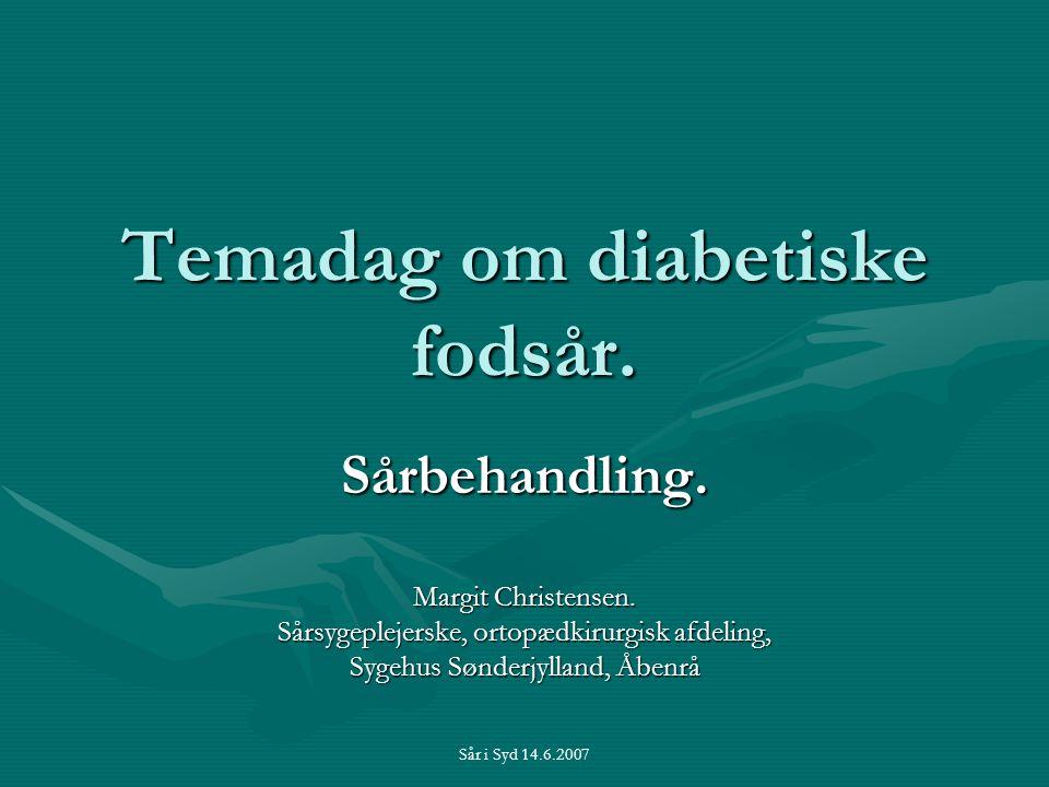 Temadag om diabetiske fodsår.