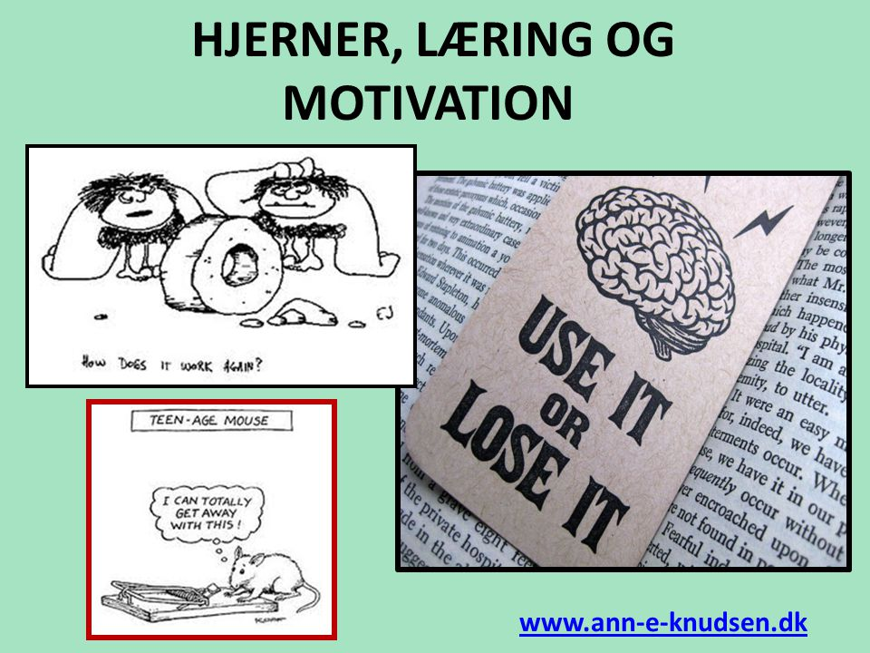 HJERNER, LÆRING OG MOTIVATION