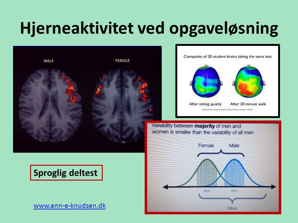 Hjerneaktivitet ved opgaveløsning