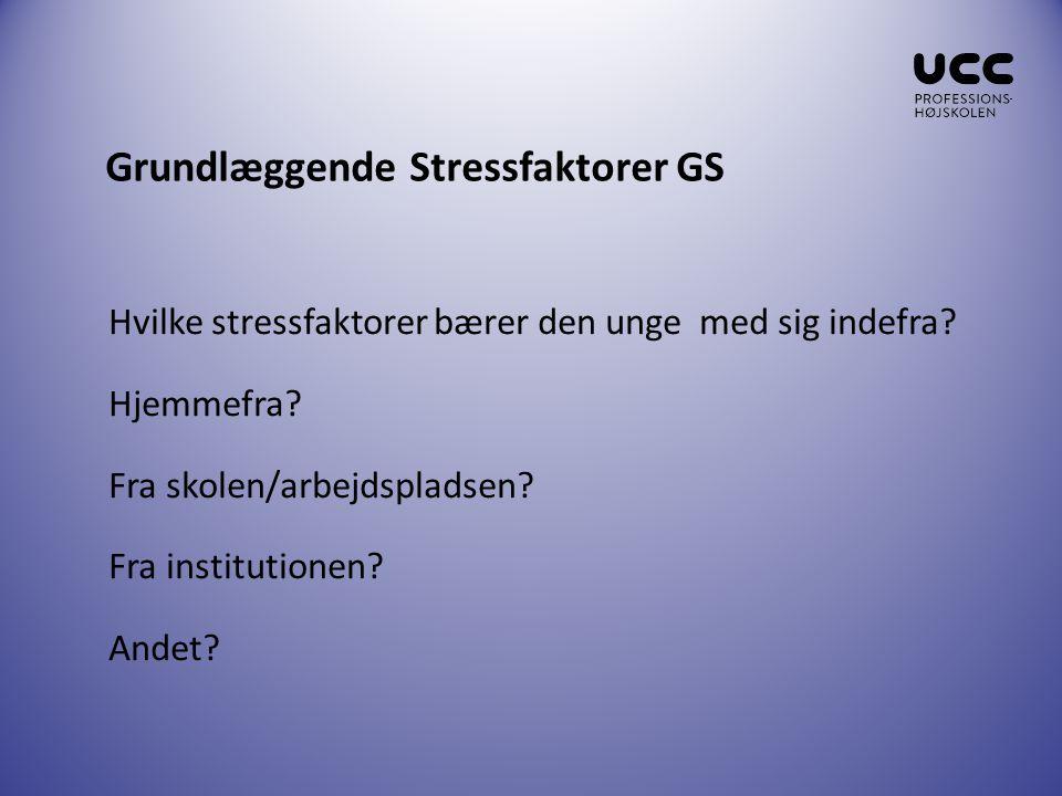 Grundlæggende Stressfaktorer GS