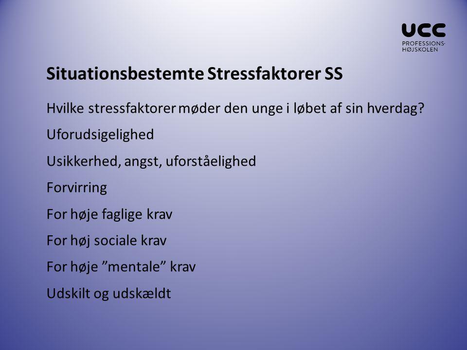Situationsbestemte Stressfaktorer SS