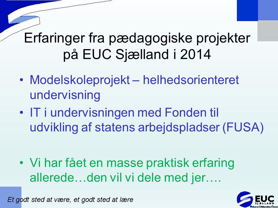Erfaringer fra pædagogiske projekter på EUC Sjælland i 2014