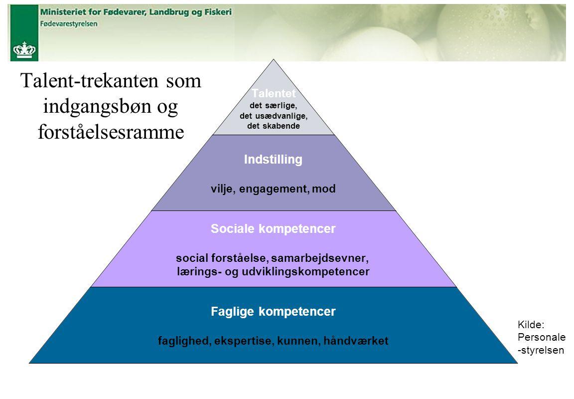 Talent-trekanten som indgangsbøn og forståelsesramme