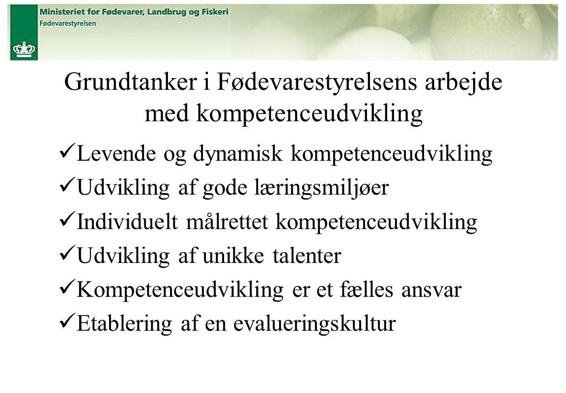 Grundtanker i Fødevarestyrelsens arbejde med kompetenceudvikling