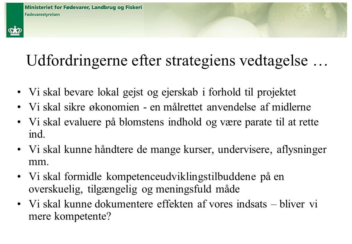 Udfordringerne efter strategiens vedtagelse …