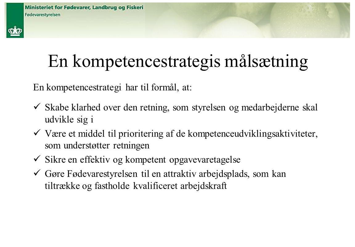 En kompetencestrategis målsætning
