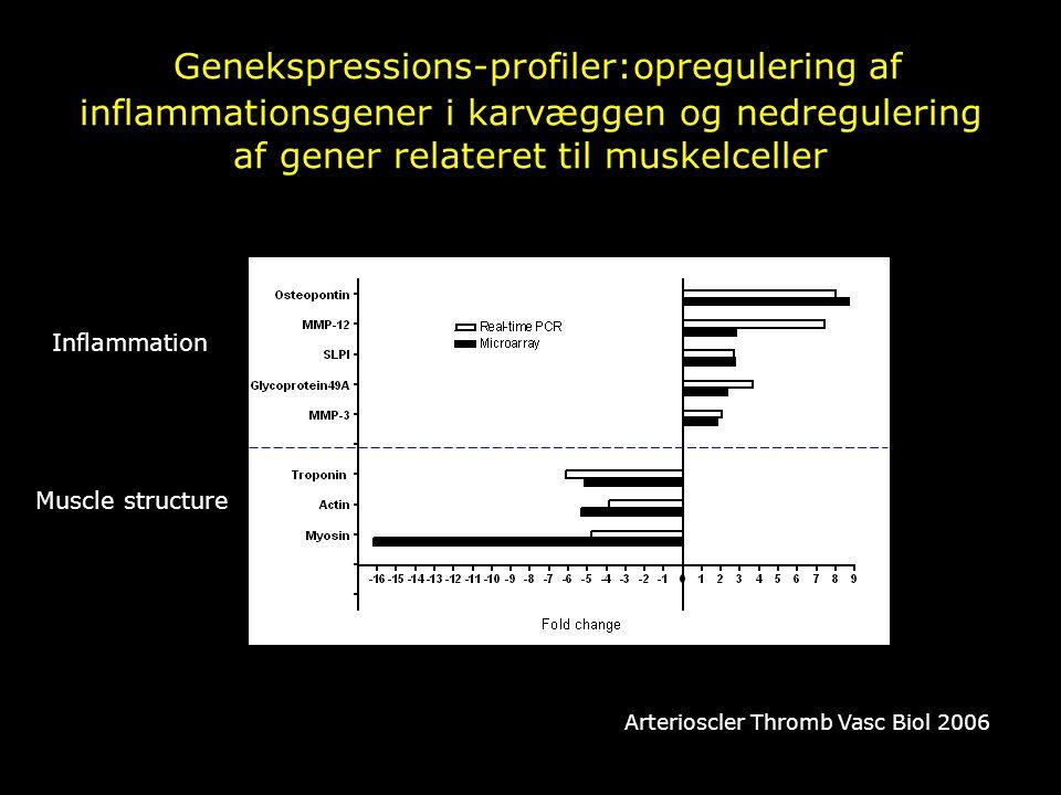 Genekspressions-profiler:opregulering af inflammationsgener i karvæggen og nedregulering af gener relateret til muskelceller