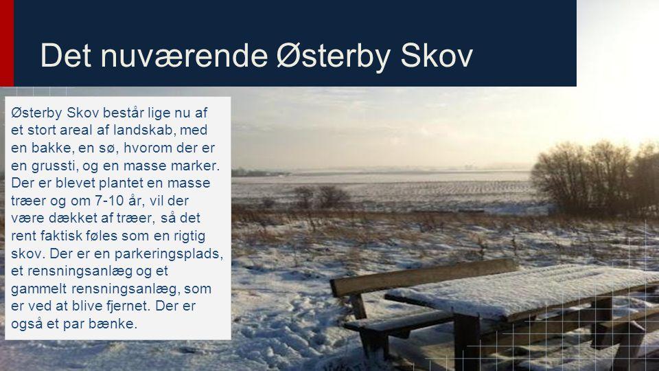 Det nuværende Østerby Skov