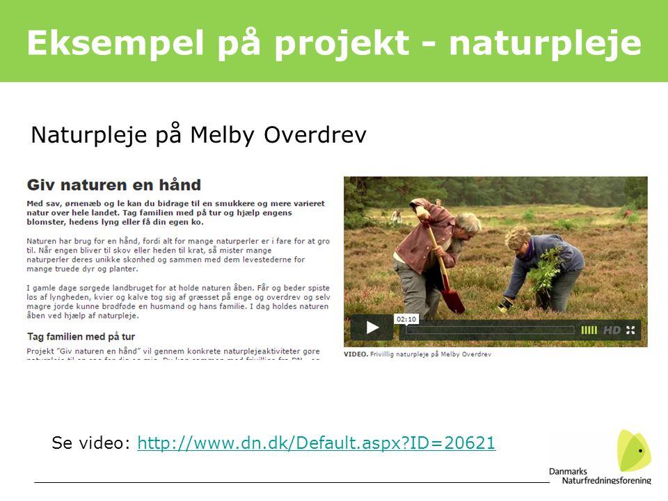 Eksempel på projekt - naturpleje