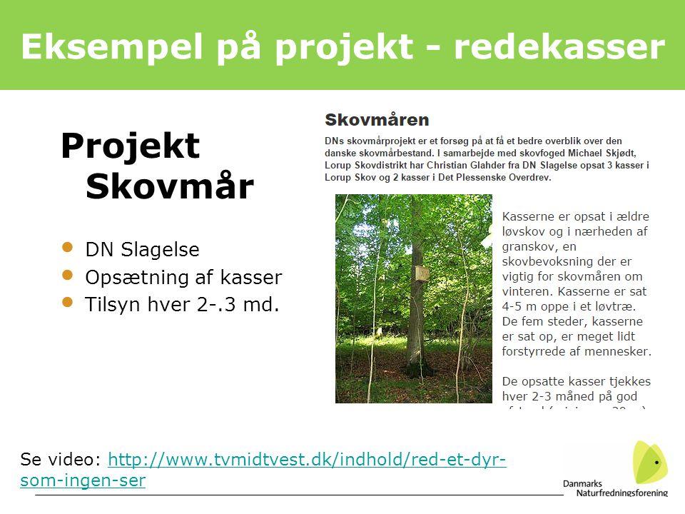 Eksempel på projekt - redekasser