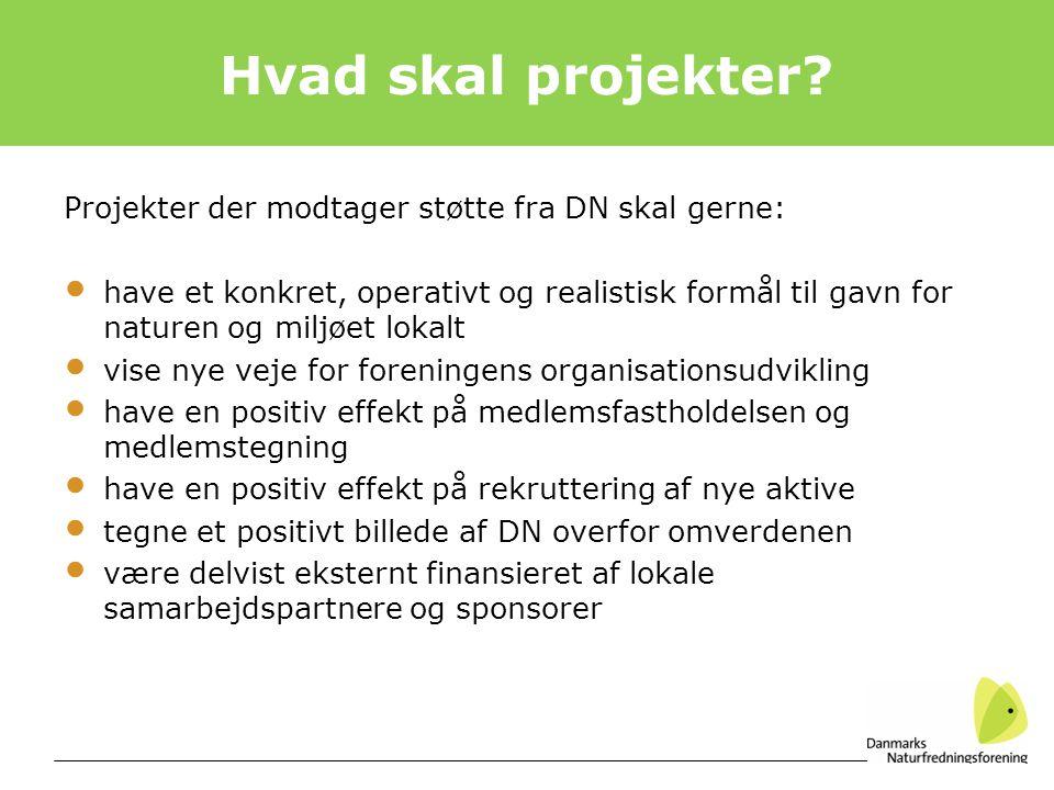 Hvad skal projekter Projekter der modtager støtte fra DN skal gerne: