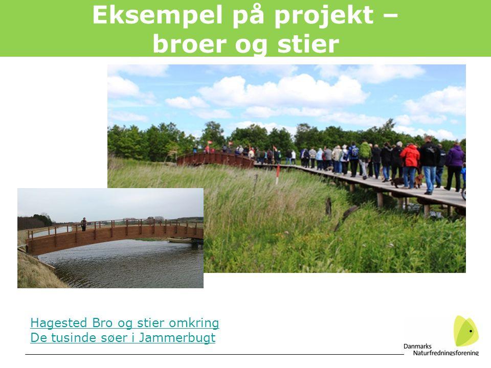 Eksempel på projekt – broer og stier