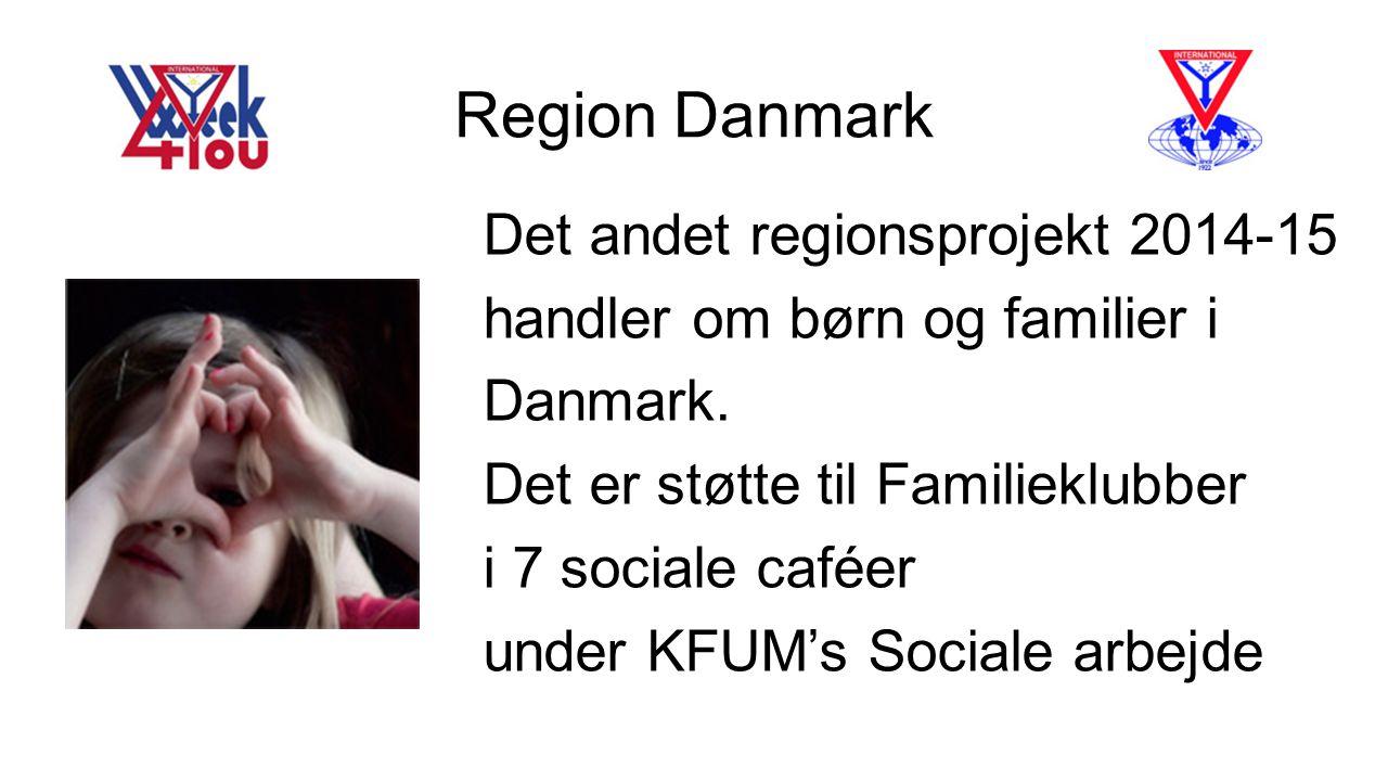 Region Danmark Det andet regionsprojekt 2014-15