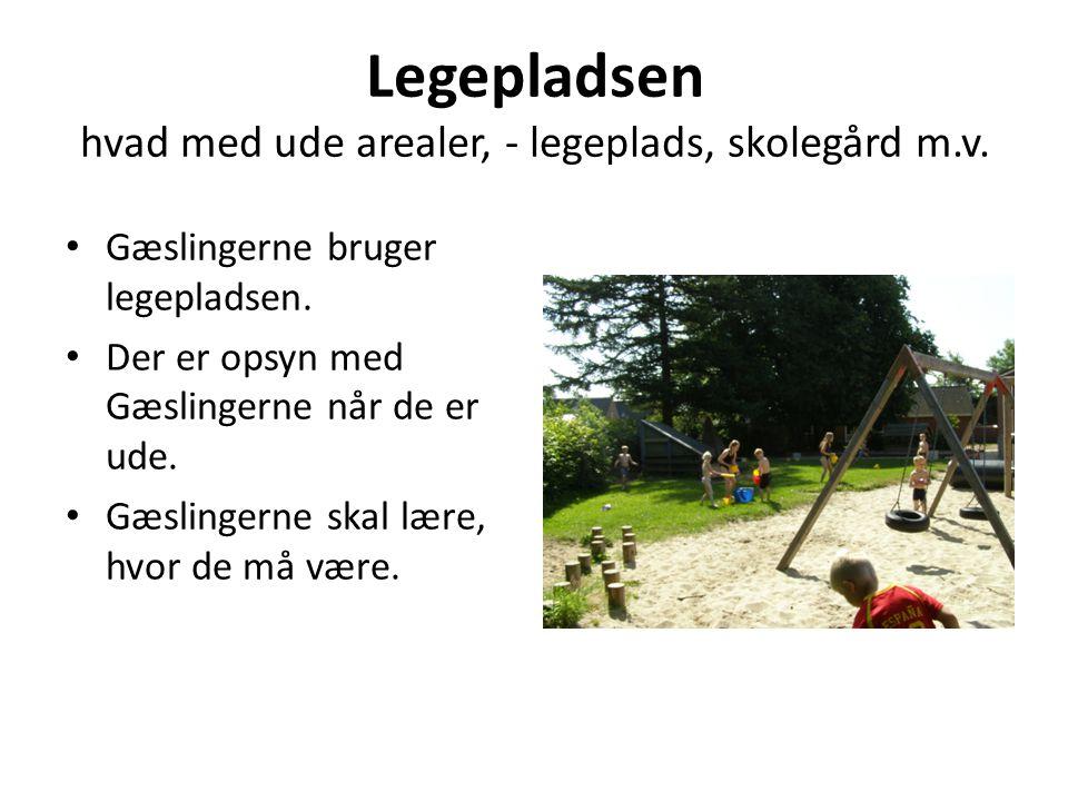 Legepladsen hvad med ude arealer, - legeplads, skolegård m.v.