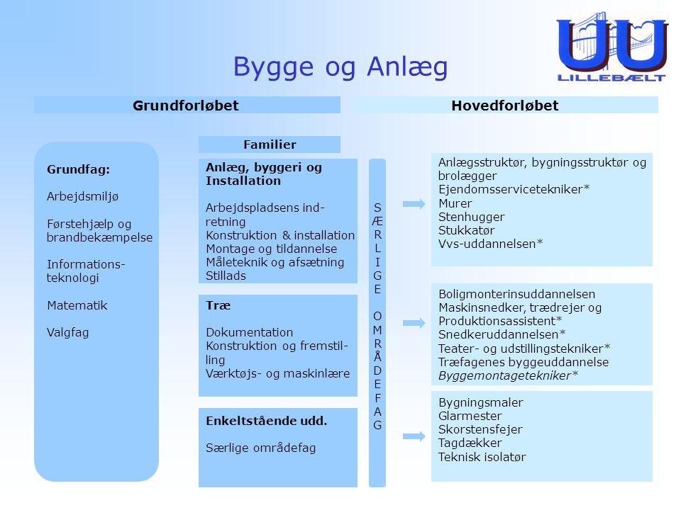 Bygge og Anlæg Grundforløbet Hovedforløbet Familier Grundfag: