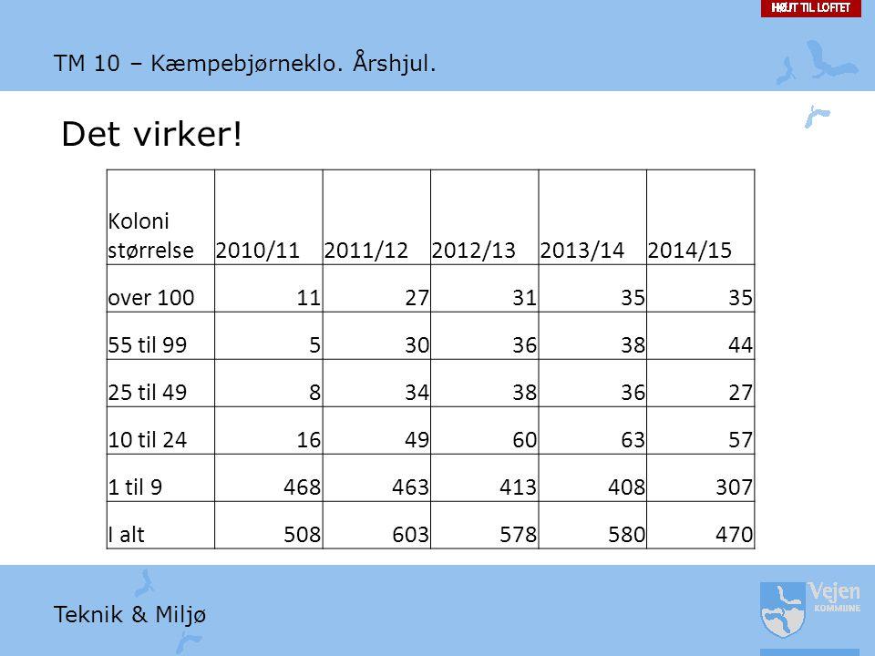 Det virker! Koloni størrelse 2010/11 2011/12 2012/13 2013/14 2014/15