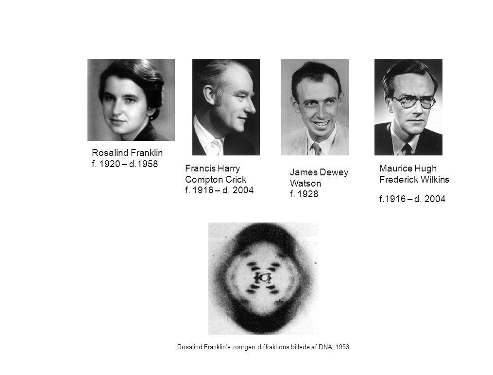 Rosalind Franklin f. 1920 – d.1958 Francis Harry Compton Crick