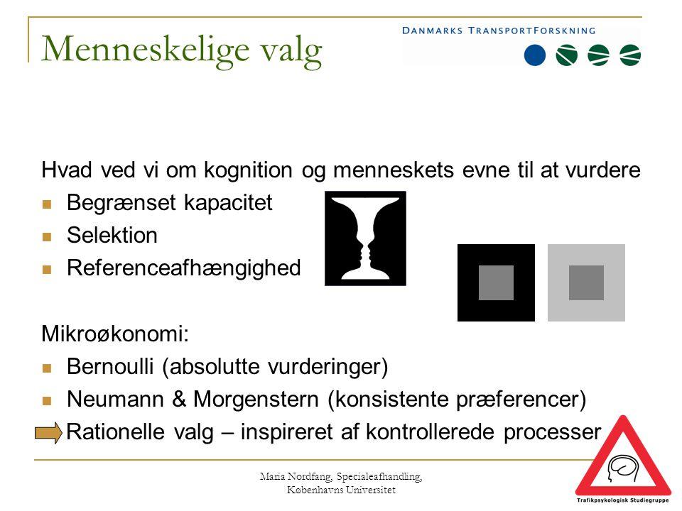Maria Nordfang, Specialeafhandling, Københavns Universitet