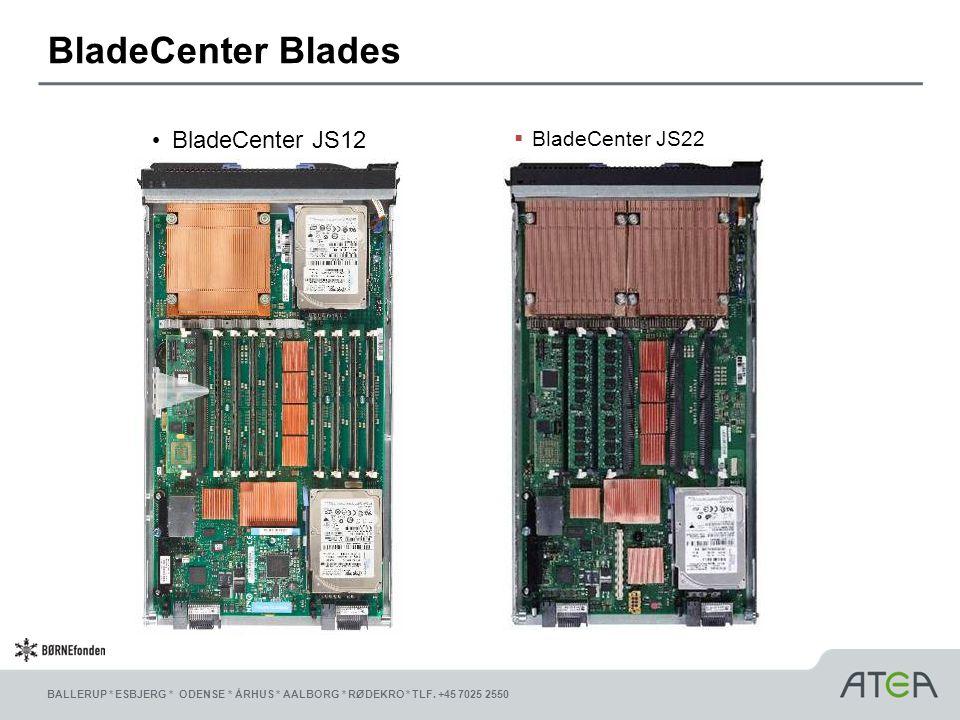 BladeCenter Blades BladeCenter JS12 BladeCenter JS22