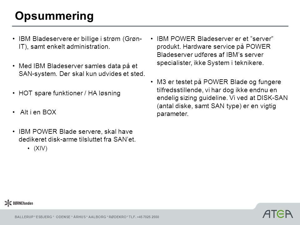 Opsummering IBM Bladeservere er billige i strøm (Grøn-IT), samt enkelt administration.