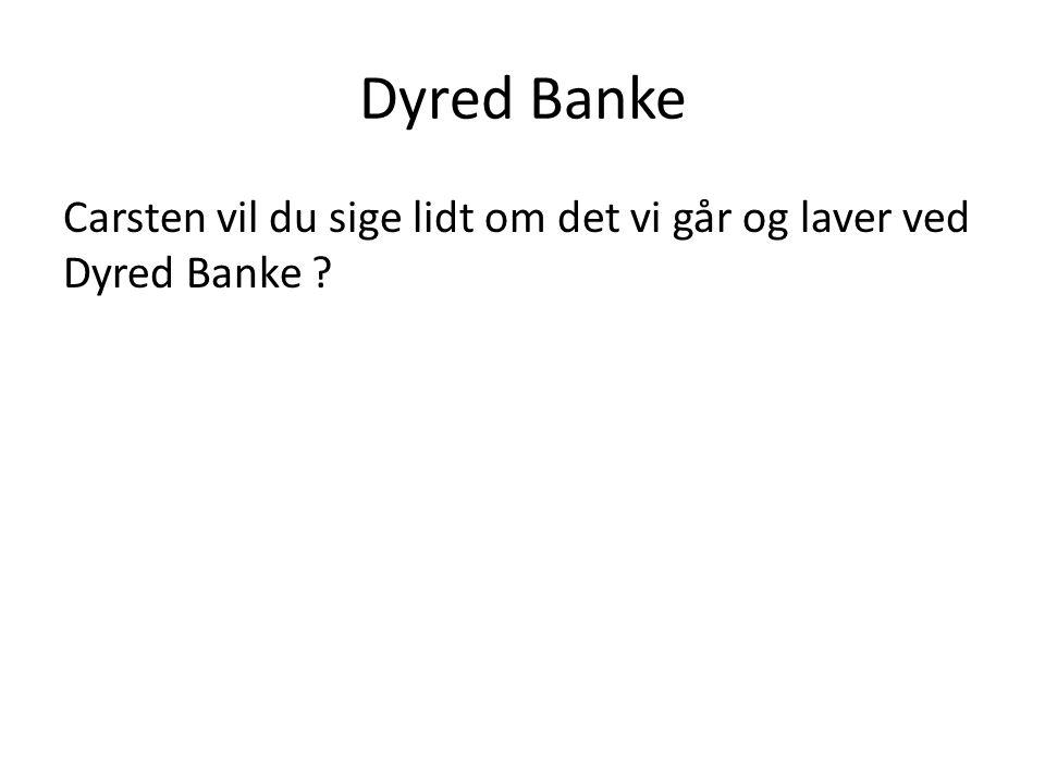 Dyred Banke Carsten vil du sige lidt om det vi går og laver ved Dyred Banke