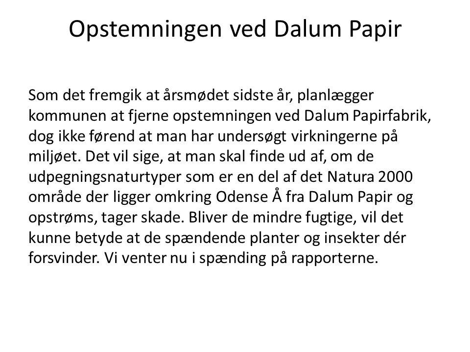 Opstemningen ved Dalum Papir