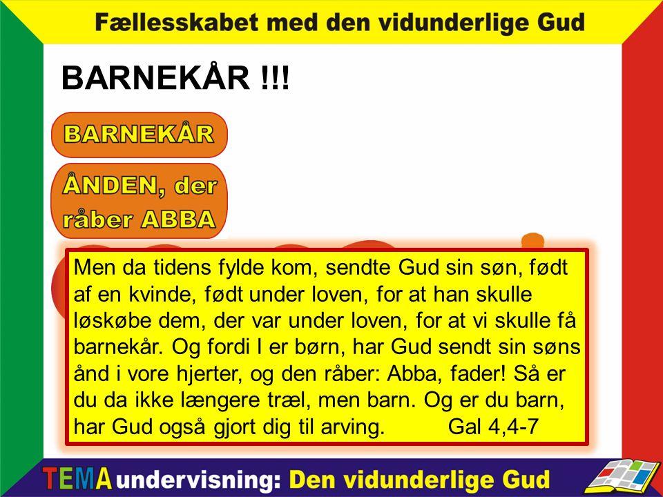 BARNEKÅR !!!