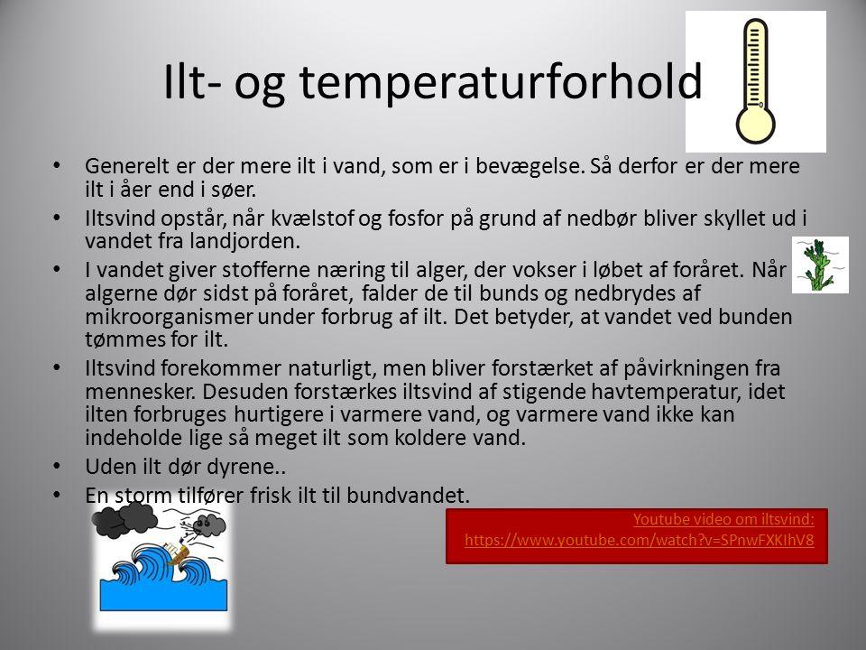 Ilt- og temperaturforhold