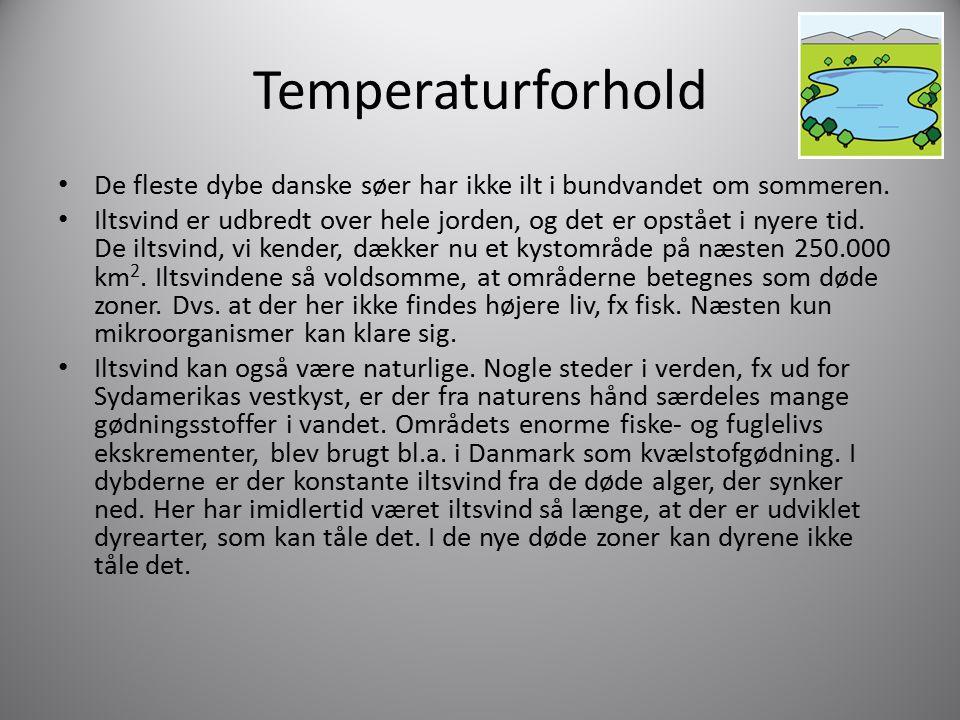 Temperaturforhold De fleste dybe danske søer har ikke ilt i bundvandet om sommeren.