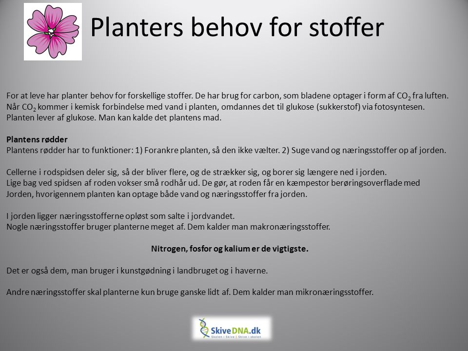 Planters behov for stoffer
