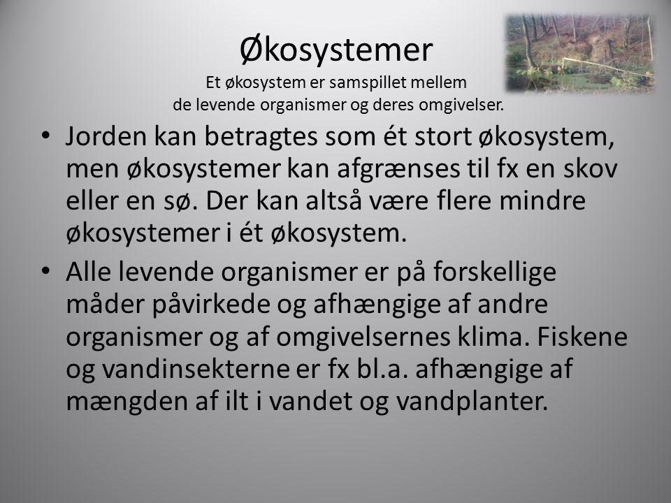 Økosystemer Et økosystem er samspillet mellem de levende organismer og deres omgivelser.