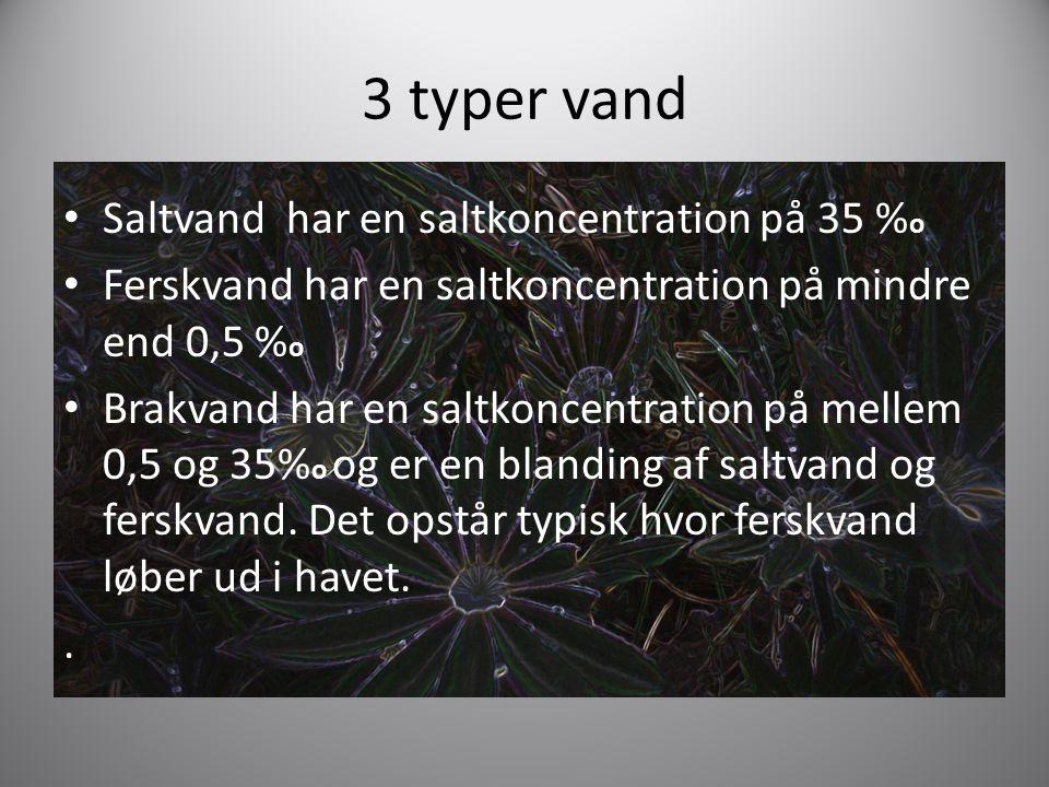 3 typer vand Saltvand har en saltkoncentration på 35 %o