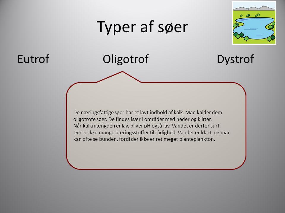 Typer af søer Eutrof Oligotrof Dystrof