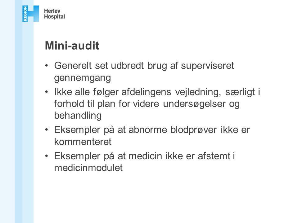 Mini-audit Generelt set udbredt brug af superviseret gennemgang