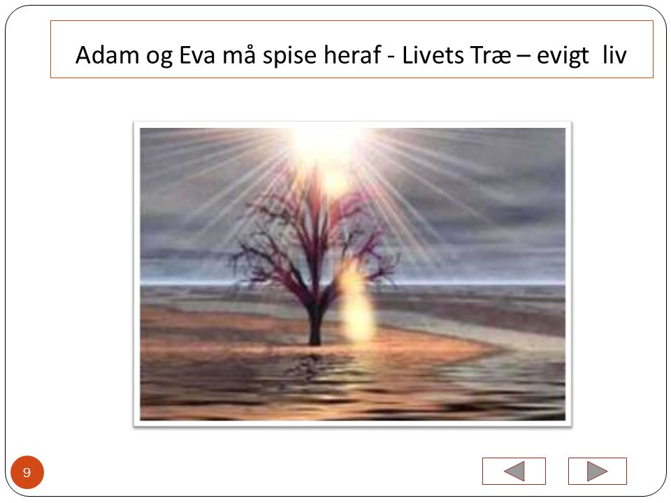 Adam og Eva må spise heraf - Livets Træ – evigt liv