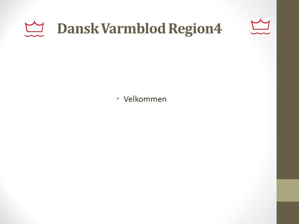 Dansk Varmblod Region4 Velkommen