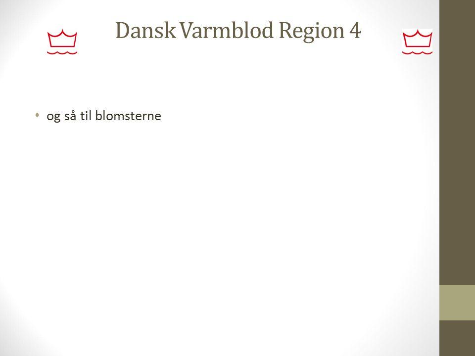 Dansk Varmblod Region 4 og så til blomsterne