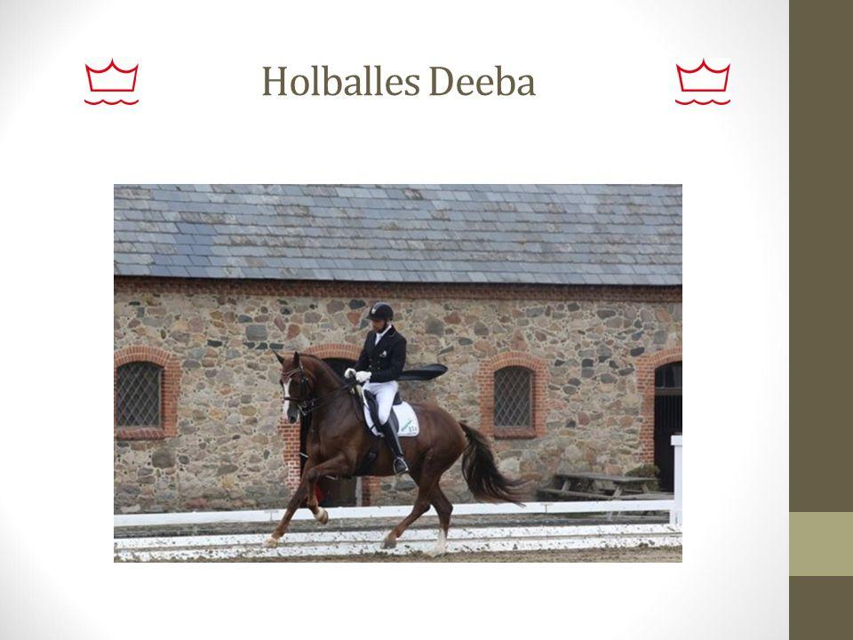 Holballes Deeba
