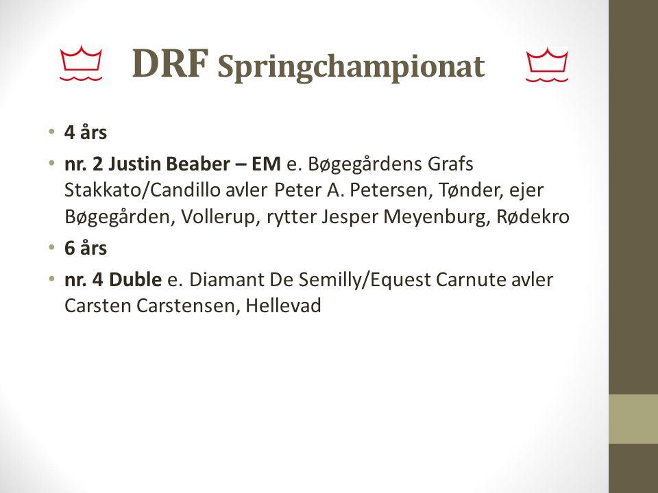 DRF Springchampionat 4 års