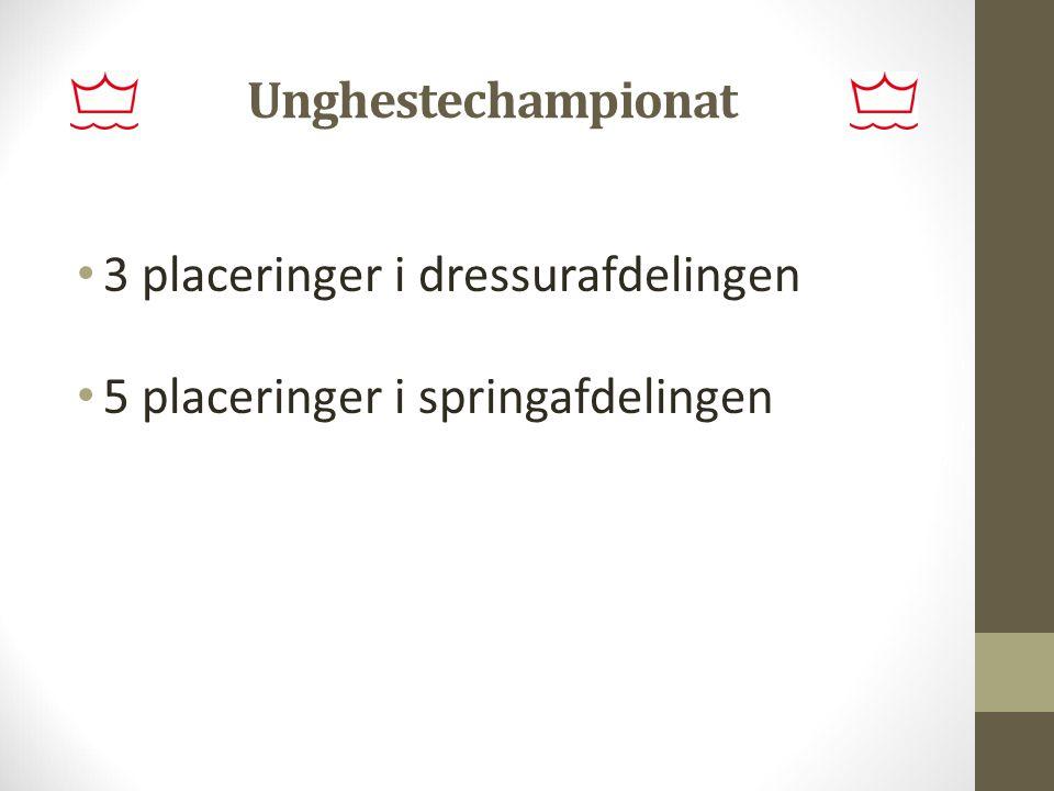 Unghestechampionat 3 placeringer i dressurafdelingen 5 placeringer i springafdelingen
