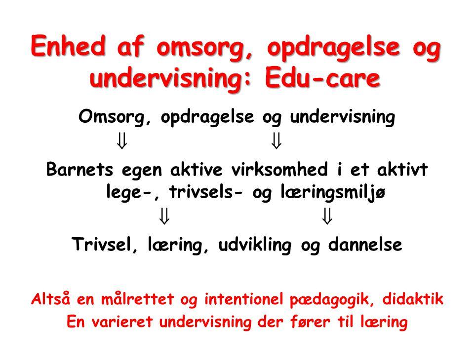 Enhed af omsorg, opdragelse og undervisning: Edu-care