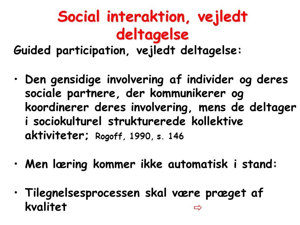 Social interaktion, vejledt deltagelse