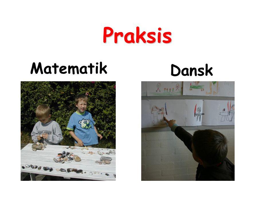 Praksis Matematik Dansk