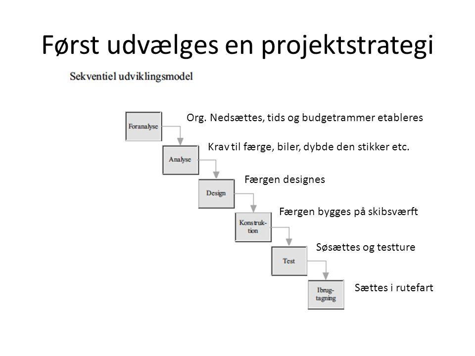 Først udvælges en projektstrategi