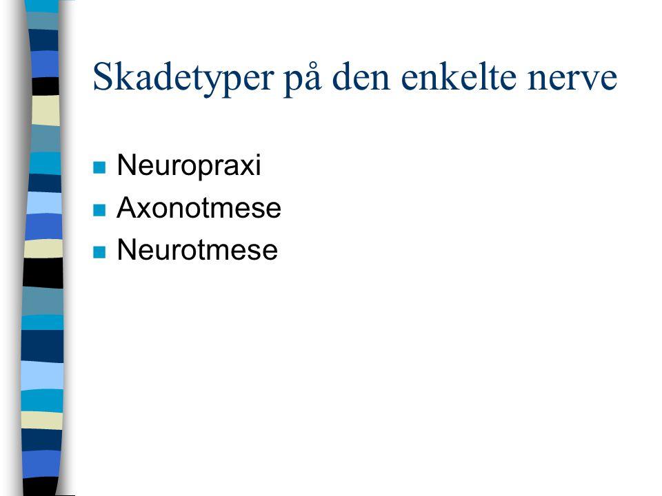 Skadetyper på den enkelte nerve