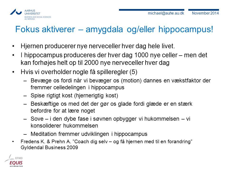 Fokus aktiverer – amygdala og/eller hippocampus!